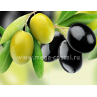оливки гроздь