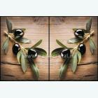 оливки ветка