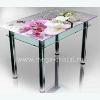 стол обеденный Эдель 11 ФП1